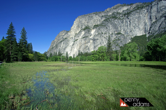 Flooded Meadow, Yosemite National Park, California