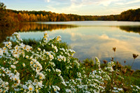 Hinckley Lake in Autumn, Hinkley, Ohio